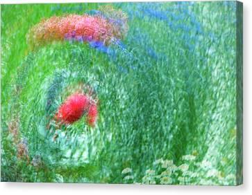 Usa, Washington, Whidbey Island Canvas Print by Jaynes Gallery