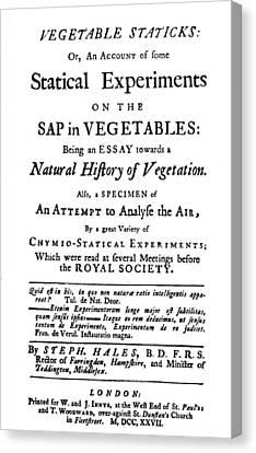 Vegetable Staticks, 1727 Canvas Print by Granger