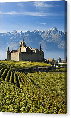 Vineyards And Castle Aigle, Switzerland Canvas Print by Yves Marcoux