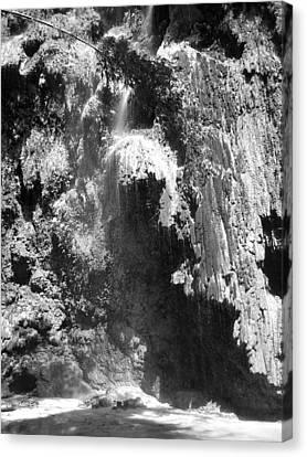 Water Falls Canvas Print by Duane Blubaugh