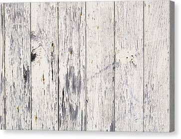 Weathered Paint On Wood Canvas Print by Tim Hester