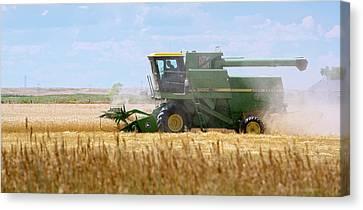 Wheat Harvest Canvas Print by Jim West