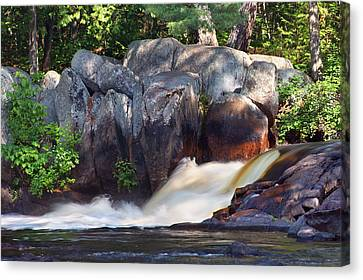 Where Tranquil Waters Run Canvas Print by Leda Robertson