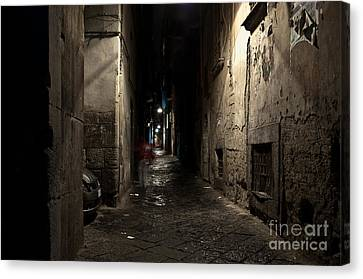 Who Goes There Canvas Print by Marion Galt