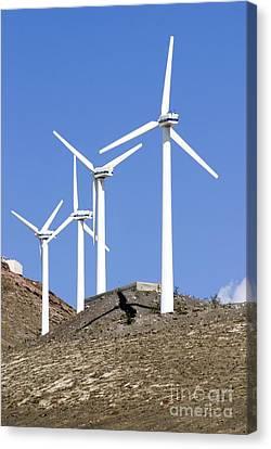 Wind Turbines, Lanzarote Canvas Print by Mark Williamson