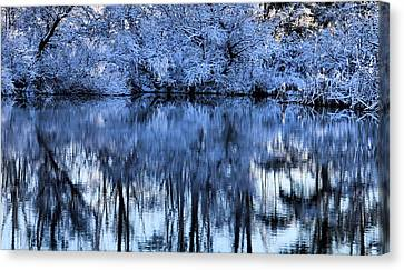 Winter Reflections Canvas Print by Dan Sproul