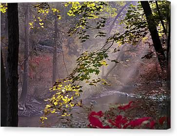 Wissahickon Autumn Canvas Print by Bill Cannon