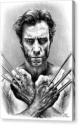 Wolverine Canvas Print by Andrew Read