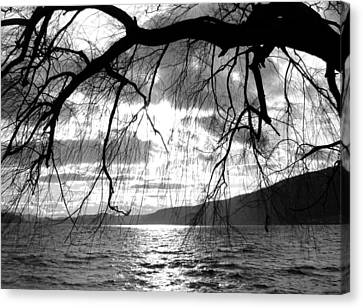 Wood Lake Sunset Canvas Print by Will Borden
