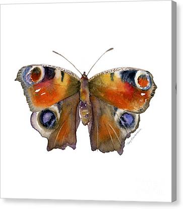 10 Peacock Butterfly Canvas Print by Amy Kirkpatrick