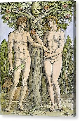 Adam And Eve Canvas Print by Granger