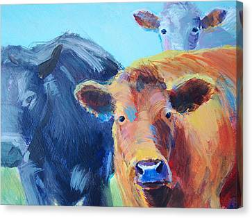 Cows Canvas Print by Mike Jory
