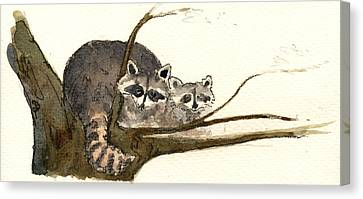 Raccoon Canvas Print by Juan  Bosco