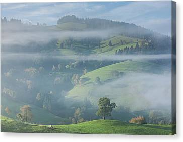 Germany, Baden-wurttemberg, Black Canvas Print by Walter Bibikow