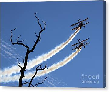 Wingwalkers Canvas Print by Angel  Tarantella