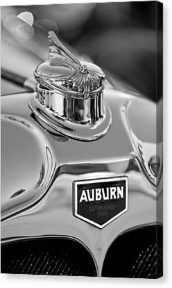 1929 Auburn 8-90 Speedster Hood Ornament 2 Canvas Print by Jill Reger