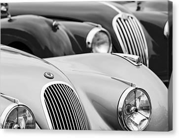1950 Jaguar Xk120 Roadster Grille 2 Canvas Print by Jill Reger