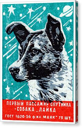 1957 Laika The Space Dog Canvas Print by Historic Image