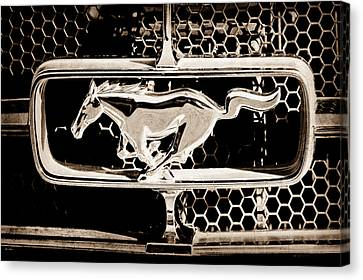 1965 Ford Shelby Mustang Grille Emblem Canvas Print by Jill Reger