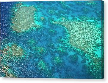 Aerial View Of The Great Barrier Reef Canvas Print by Miva Stock