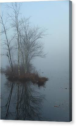 As The Fog Lifts Canvas Print by Karol Livote