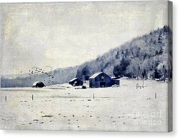 Back Roads Of Kentucky Canvas Print by Darren Fisher