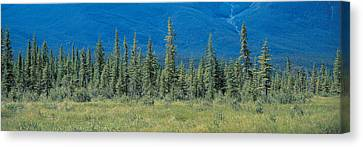 Banff National Park Alberta Canada Canvas Print by Panoramic Images