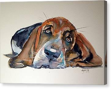 Basset Hound Canvas Print by Kovacs Anna Brigitta