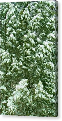 Beautiful Winter Tree Canvas Print by Lanjee Chee