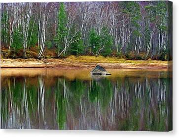 Birch Shoreline Canvas Print by Pat Now