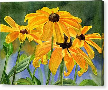 Black Eyed Susans Canvas Print by Sharon Freeman