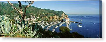Casino Building And Avalon Harbor Canvas Print by Panoramic Images