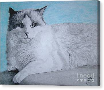 Cat Canvas Print by Cybele Chaves