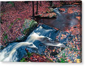 Chesterfield Gorge New Hampshire Canvas Print by Edward Fielding