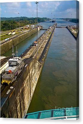 Cruise Ship Passes Through Gatun Locks Panama Canal Canvas Print by Amy Cicconi