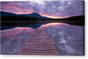 Daicey Pond Sunrise Canvas Print by Patrick Downey