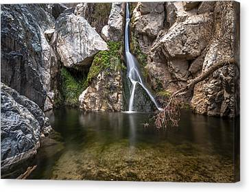 Darwin Falls Canvas Print by Cat Connor