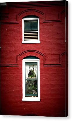 Doggie In The Window Canvas Print by Laurie Perry