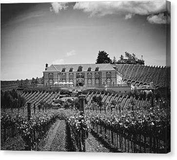 Domaine Carneros Winery - Napa Valley Canvas Print by Mountain Dreams