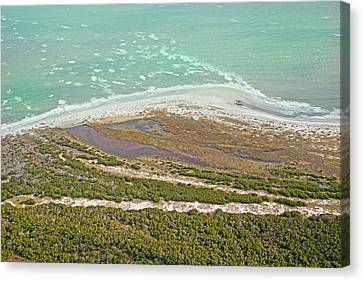 East Coast Aerial Near Jekyll Island Canvas Print by Betsy Knapp