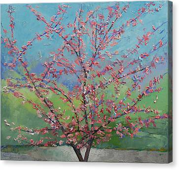Eastern Redbud Tree Canvas Print by Michael Creese