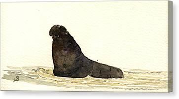 Elephant Seal Canvas Print by Juan  Bosco