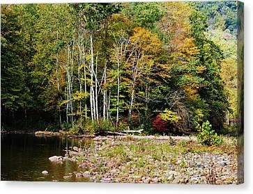 Fall Color River Canvas Print by Thomas R Fletcher
