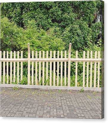 Fence Canvas Print by Tom Gowanlock