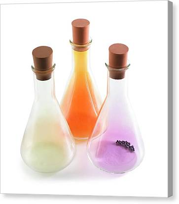 Flasks Containing Halogens Canvas Print by Science Photo Library