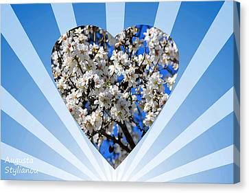 Floral Heart Canvas Print by Augusta Stylianou