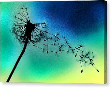 Flying Away Canvas Print by Marianna Mills