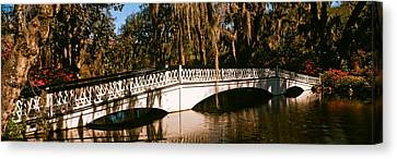 Footbridge Over Swamp, Magnolia Canvas Print by Panoramic Images