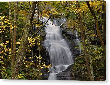 Forest Waterfall In Autumn Canvas Print by Stephen  Vecchiotti
