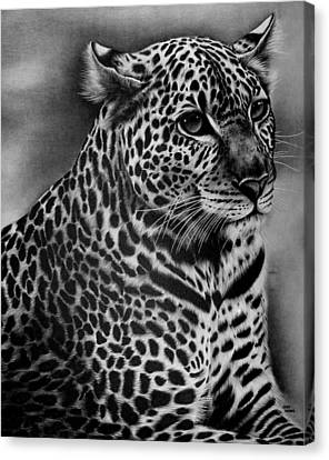 Furry Leopard Canvas Print by Jerry Winick